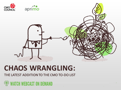 Custom Webcast Graphic for Chaos Wrangling: The Latest Addition to the CMO To-do list